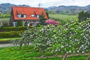 Obstblüte in Frickingen van Edgar Schermaul