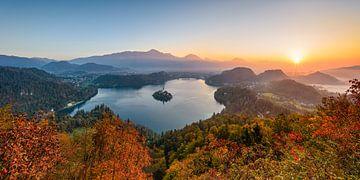 Het Bled-meer in Slovenië van Michael Valjak