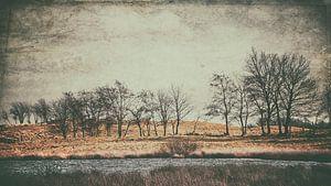 Vintage-Landscape