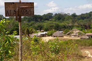 Trio dorp in het zuiden van Suriname van rene marcel originals