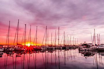 De jachthaven van Juelsminde in het ochtendlicht von Tony Buijse