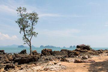 Koh Yao Noi, Thailand. von Aukelien Minnema
