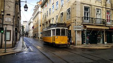Lissabon's gele mascotte von Jacco en Céline