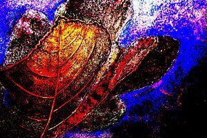 Fig leaves van