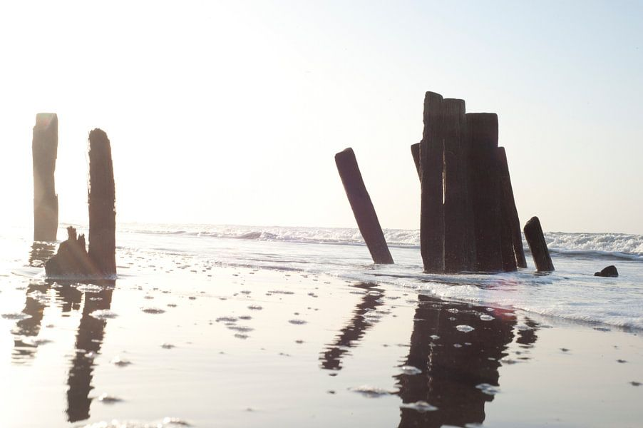 Gambia Beach 2 van Wijs & Eigen