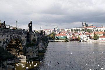 bij de Karelsbrug met uitzicht op de Praagse Burcht van Heiko Kueverling
