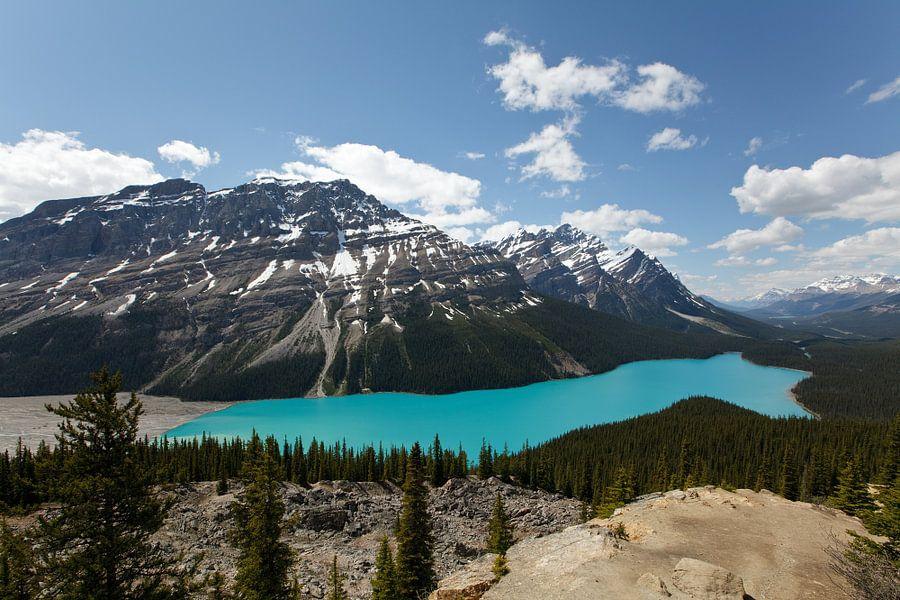 Peyto Lake, Banff NP van Bart van Dinten