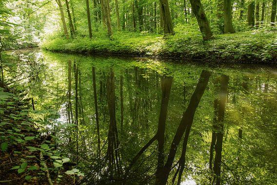 Spiegelbeeld van Dirk van Egmond
