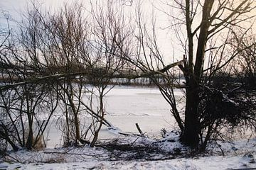 Un magnifique paysage hivernal à almere sur Kim Groenendal