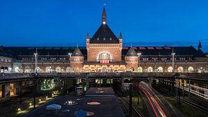 Copenhagen Central van Scott McQuaide