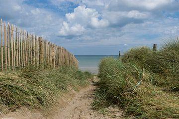 Auf dem Weg zum Strand. Meer, Strand und Weg durch die Dünen