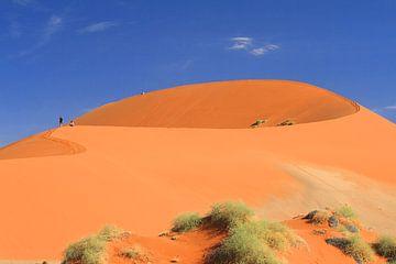Woestijn landschap met rode duinen Namibië van Bobsphotography
