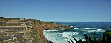 Playa de El Bollullo op Tenerife met zijn buitengewone charme van kanarischer Inselkrebs Heinz Steiner
