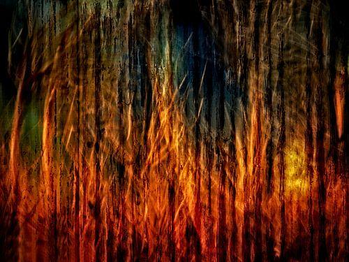 In vuur en vlam van