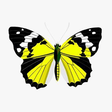 Vlinder - geel van Jole Art (Annejole Jacobs - de Jongh)