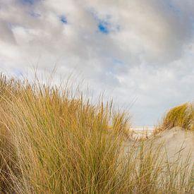 Doorkijkje duinen naar strand van Nationaal Park Schiermonnikoog. van Margreet Frowijn