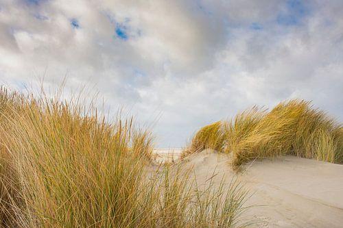 Doorkijkje duinen naar strand van Nationaal Park Schiermonnikoog. van