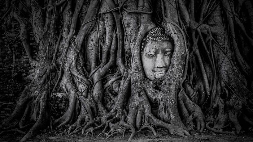Ayutthaya van Manjik Pictures