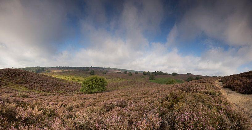 Posbank panorama van Miranda Bos