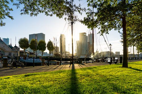 Rotterdam | Zon in de Veerhaven