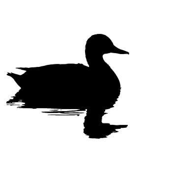 Silhouette einer Ente (Quadrat) von Fotografie Jeronimo