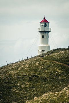 Leuchtturm auf Mykines, Färöer-Inseln von Expeditie Aardbol