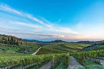 Toscane van Lex van Doorn