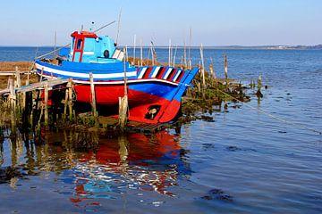 Kleurrijke vissersboot, Portugal