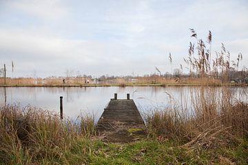 Stijger, Niederlande Landschaft von Leontien Adriaanse