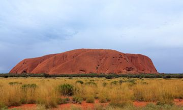 Close-up van Uluru,  of Ayers Rock, Noordelijk Territorium, Australië van