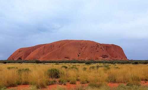 Close-up van Uluru,  of Ayers Rock, Noordelijk Territorium, Australië