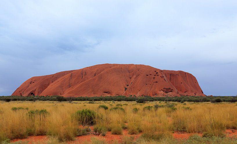 Close-up van Uluru,  of Ayers Rock, Noordelijk Territorium, Australië van Henk van den Brink