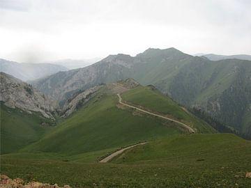 Weg over bergkam in Kirgizië van Toon Loonen