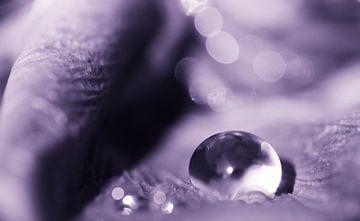 Violet drop van Jessica Berendsen