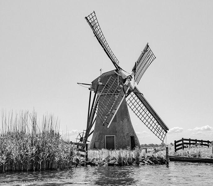 Hollands best van ÇaVa Fotografie