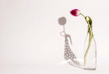Tulpenmädchen-Schatten von Esther Ravesloot