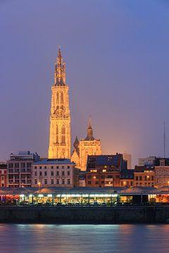 Onze-Lieve-Vrouwekathedraal aan de Schelde in Antwerpen van Dennis van de Water
