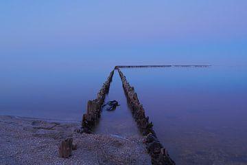 Serenity at the IJssel lake sur Wilco Berga