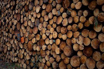 Stapel hout voor de deur van Dieuwertje Van der Stoep