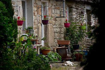 typisch französischer Innenhof von Ed Dorrestein