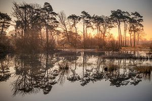 Réflexion au lever du soleil sur Gerard van der Wal