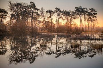 Reflexion bei Sonnenaufgang von Gerard van der Wal