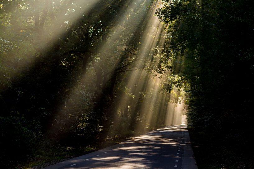 Zonnestralen over weg  van Arthur Wolff