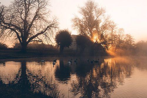 Uriger Sonnenaufgang