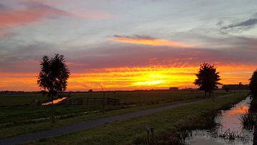 Nederland de avond valt van f th