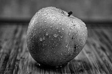 Apfel schwarz weiss Bild von Bernd Hartner