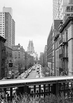 High Line, NYC 2019 van Emma Groenenboom