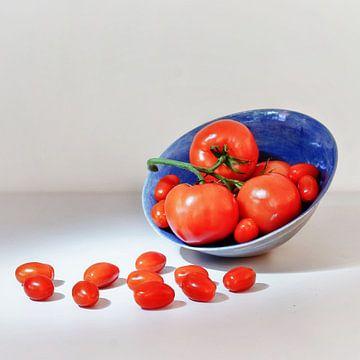 Red and blue van Saskia Dingemans