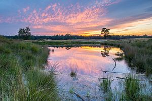 Kleurrijke zonsondergang op de heide met spiegeling in het water