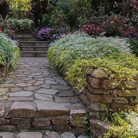 jardin avec de belles plantes à fleurs des deux côtés du chemin sur ChrisWillemsen